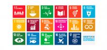 Objetivos de Desarrollo Sostenible y la Agenda 2030: el compromiso del Movimiento ASPACE